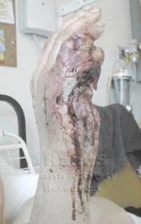 mano - Phil Schneider el hombre que mato a dos extraterrestres – Fotos Inéditas