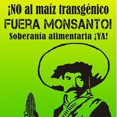 FUERA-MONSANTO-Cuernavaca-05-25