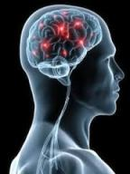 brain-hyperactivity