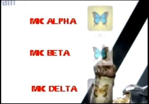 mk-mariposas2